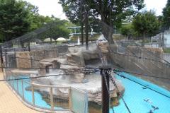 東山動植物園 ペンギン舎