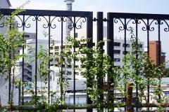 横浜市 アメリカ山公園(門扉)